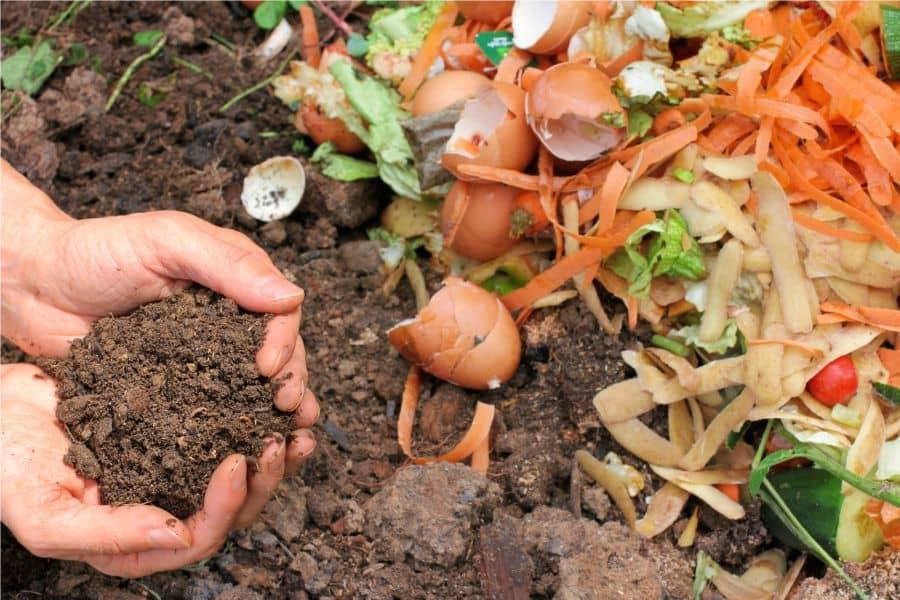 Как приготовить компост и как использовать его на участке